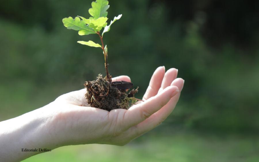 Il piano strategico di Liquigas per guidare l'impegno alla sostenibilità al 2025